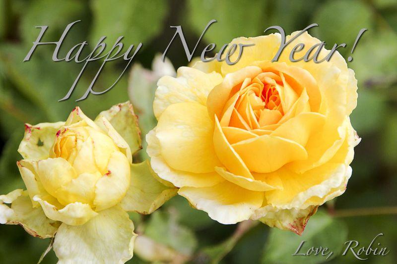 Happy New Year Pro Thx